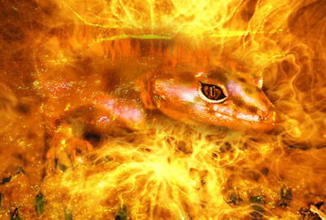 Физический огонь представляет собой осаждение саламандрами
