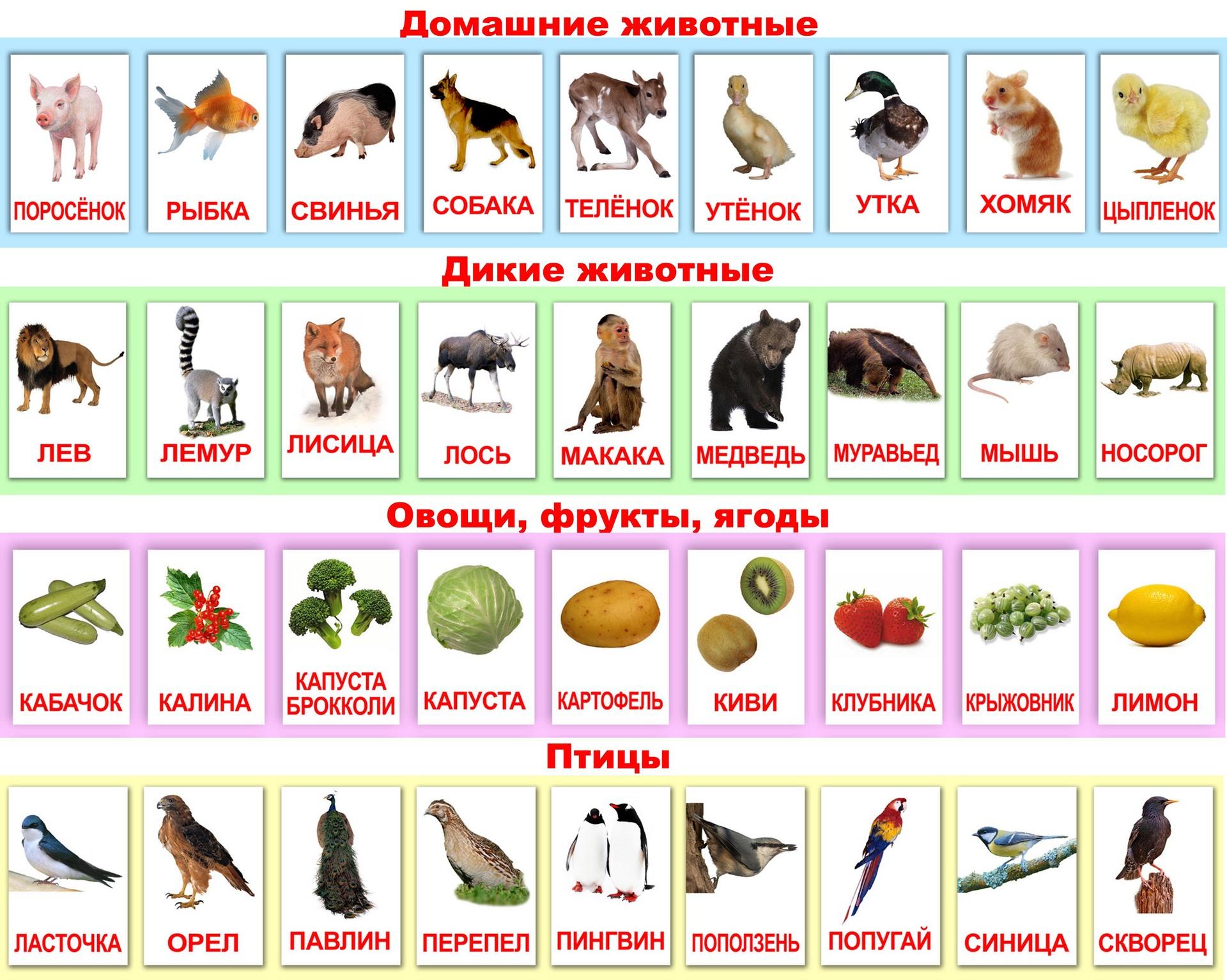 школа россии английский язык