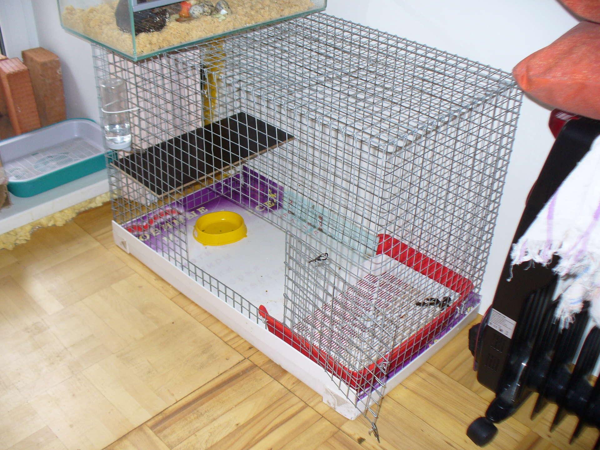Как сделать клетки для декоративных кроликов своими руками фото