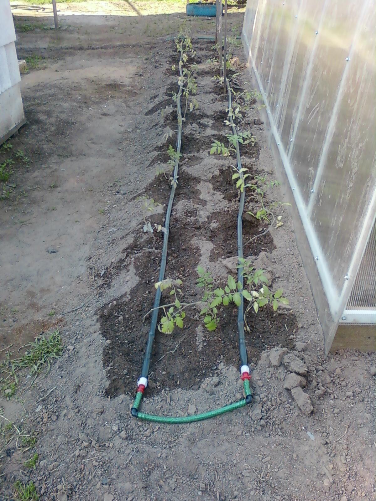 Капельный полив в теплице и на огороде своими руками 98