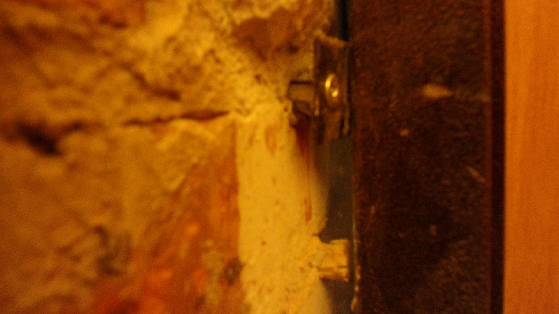 Смотреть дырки у телок 23 фотография