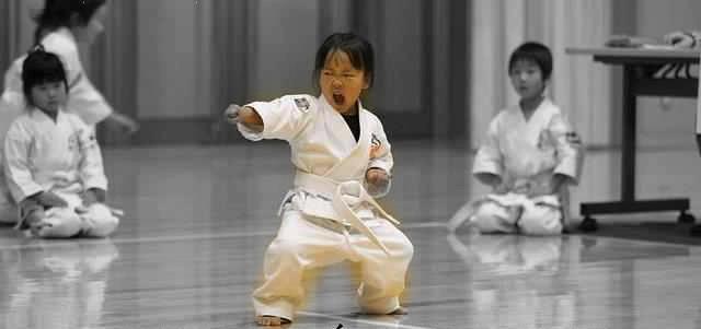 Ищу учеников для занятий каратэ в алексине