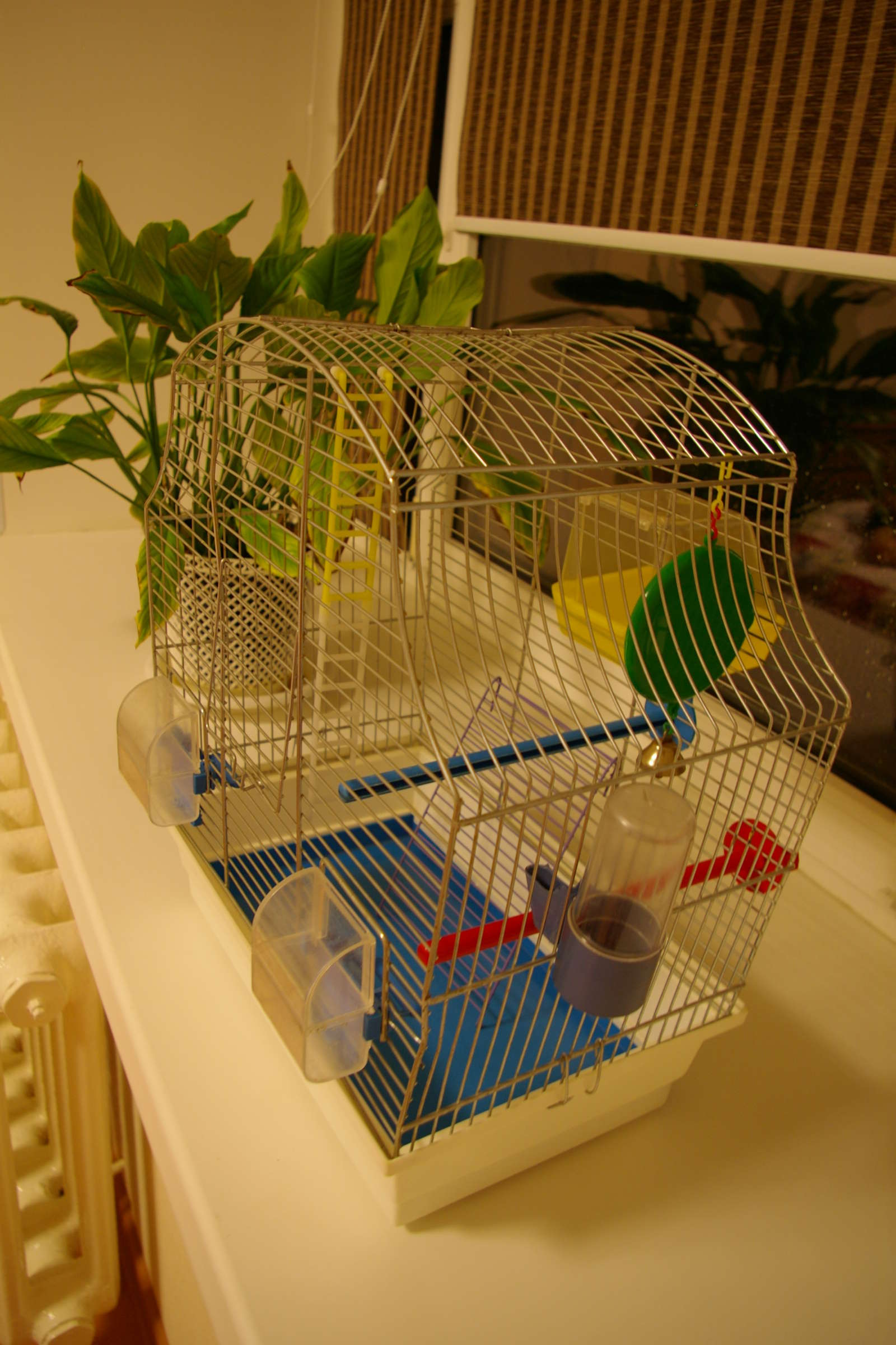 Полка для клетки с попугаем своими руками