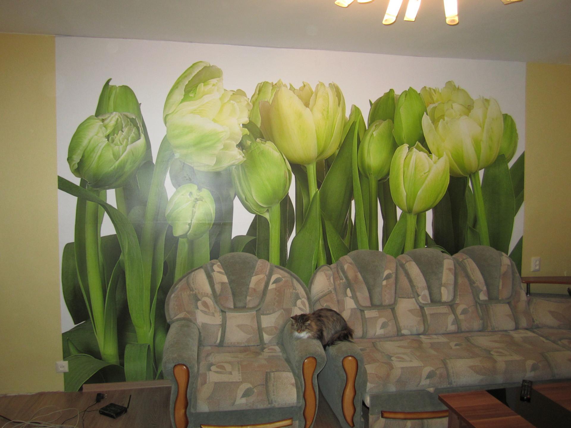 Купить фотообои тюльпаны