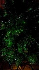 1872 X 3328 546.8 Kb Где купить елку в Ижевске? 2012-2013