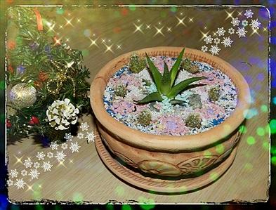 1680 X 1280 266.3 Kb Композиции из растений. (Проба пера)
