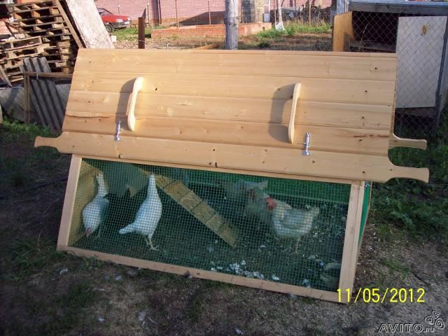 Курятник своими руками на 5 куриц