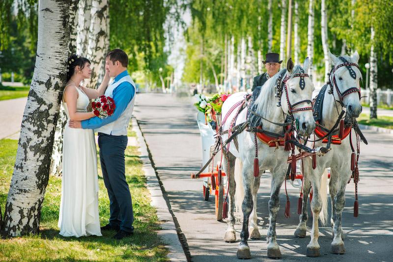 800 x 534 800 x 534 800 x 534 Алексей Широких. Семейный и свадебный фотограф.