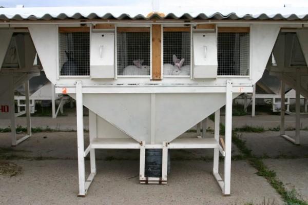 Клетка для кроликов мини ферма