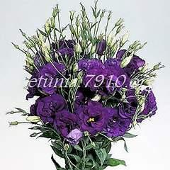 300 X 300 35.0 Kb цветы для вашего сада, кафе, придомовой территории