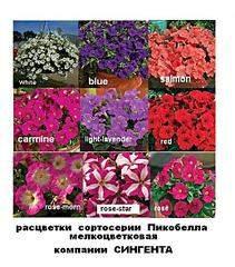 517 X 588  73.0 Kb цветы для вашего сада, кафе, придомовой территории