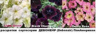 831 X 326  60.7 Kb цветы для вашего сада, кафе, придомовой территории
