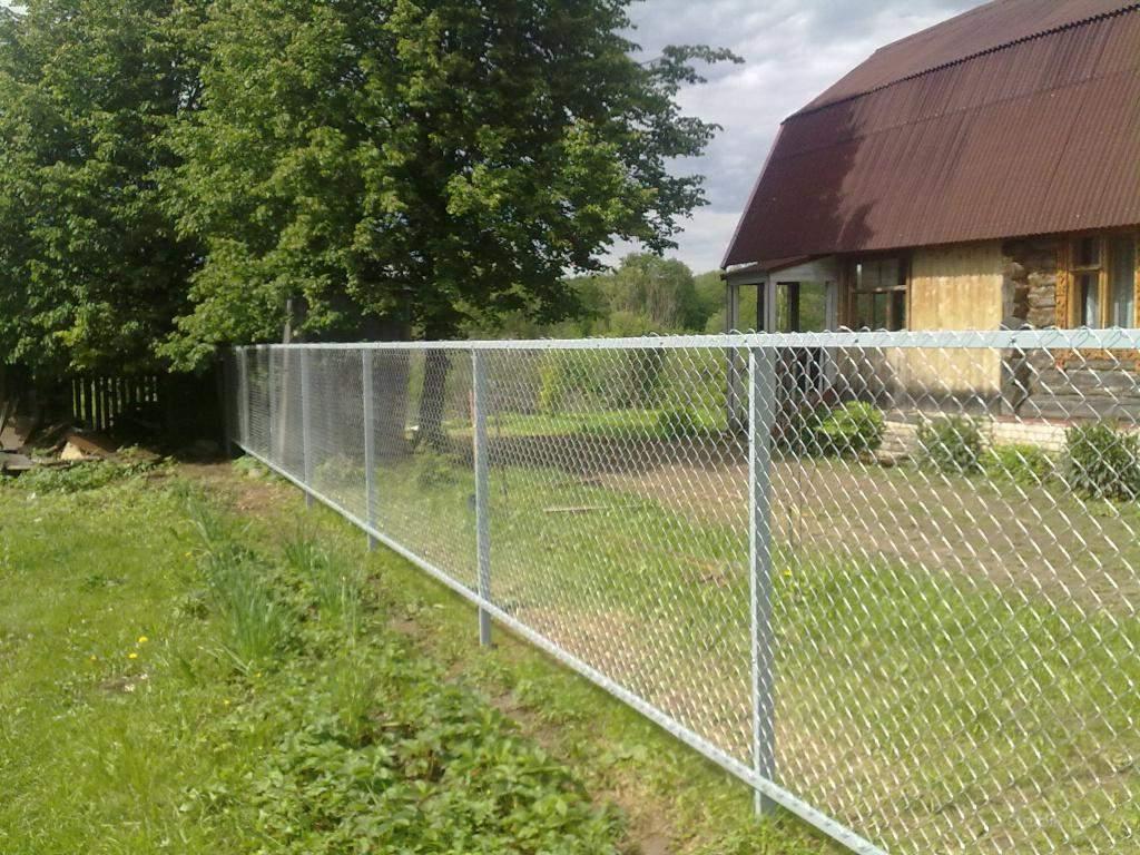 Забор на участке фото