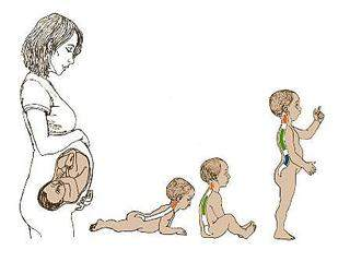 448 X 336 15.7 Kb СЛИНГОЦЕНТР: ВСЕ для беременных!для кормления!слинги!слингокуртки!