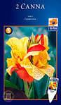 279 X 478 42.0 Kb Горшечные ЦВЕТЫ, Цветы для сада*Луковичные-ПОЛУЧАЕМ СРОЧНО