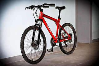 1920 X 1281 269.5 Kb куплю велосипед bike по предложению