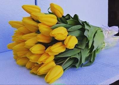 Тюльпаны к 8Марта!