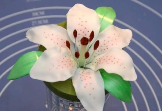 Лилии из мастики мастер класс с пошаговым фото
