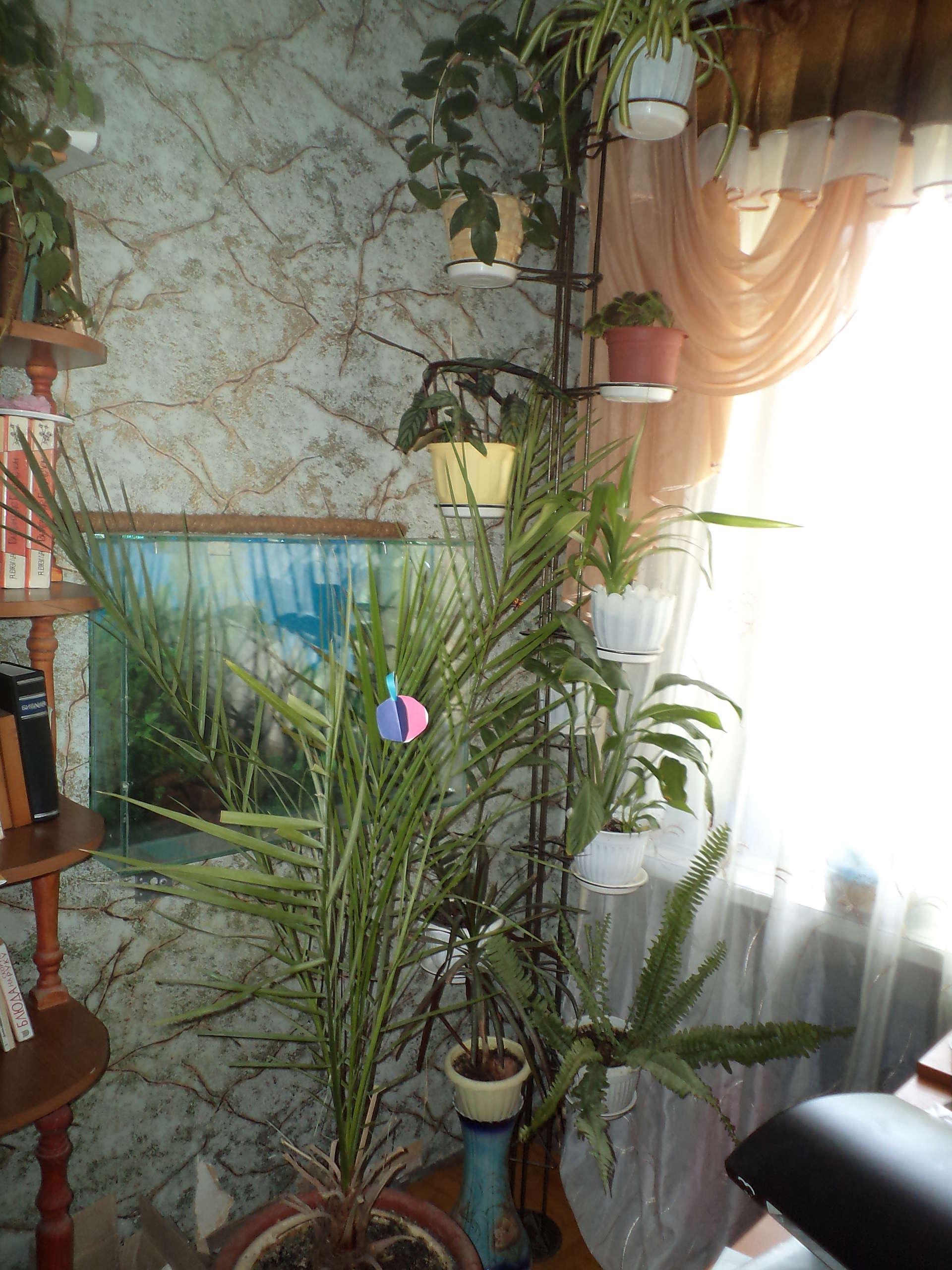 Подставки для цветов распорки пол потолок