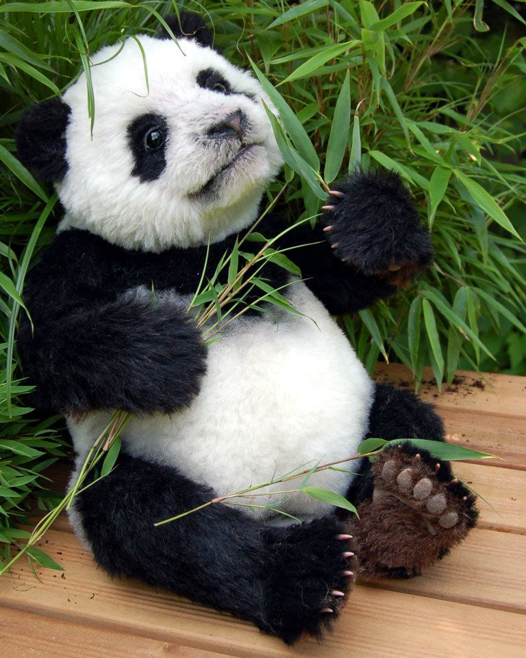 выкройка панды натюр с открывающимся ротиком