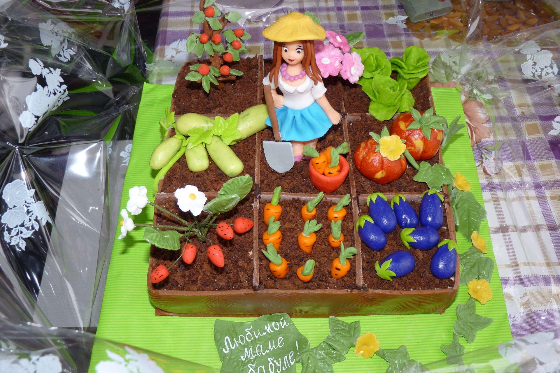Картинки прикольных тортиков на огородную тему, попугаями картинка мая