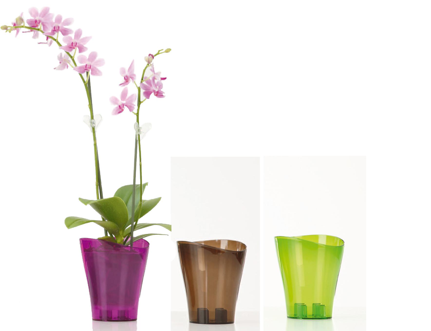 абрау предпочитают какие горшки нужны для орхидей фото немного поделок