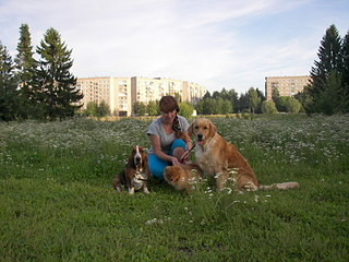 1920 X 1440 499.1 Kb У нас ЩЕНКИ ! Ариша и её дети! Золотистый ретривер. Бассет- Нюша и шпиц -Рашель.