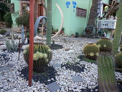 1920 X 1440 439.5 Kb 1920 X 1440 496.1 Kb 1920 X 1440 371.0 Kb Растения-экзоты в саду
