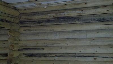 1024 X 577 383.7 Kb Отделка деревянных домов: шлифовка,покраска,конопатка,теплый шов (фото).