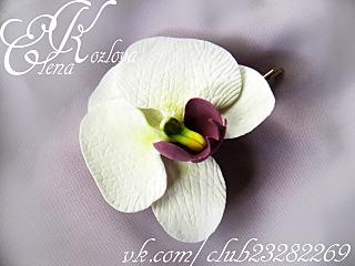 1280 X 960 881.0 Kb 1280 X 960 872.0 Kb цветы из холодного фарфора