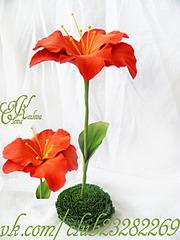 960 X 1280 778.4 Kb цветы из холодного фарфора