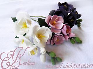 1152 X 852 636.3 Kb 1280 X 960 864.5 Kb 1172 X 772 877.4 Kb 1280 X 960 870.0 Kb 960 X 1280 778.4 Kb цветы из холодного фарфора