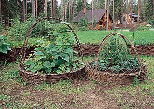 700 X 496 293.7 Kb Идеи для огорода и дачи.