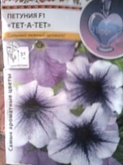 1536 X 2048 373.2 Kb Цветы