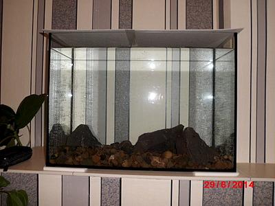 1920 X 1440 590.6 Kb Как запустить аквариум?