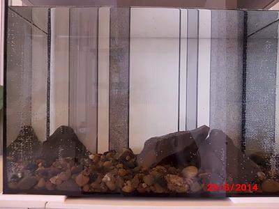 1920 X 1440 563.9 Kb 1920 X 1440 590.6 Kb Как запустить аквариум?