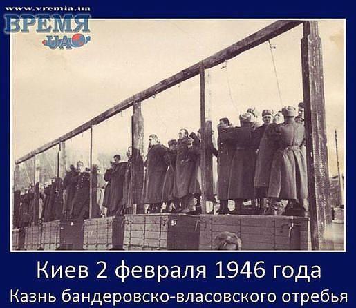 515 x 446 Под Донецком потерпел крушение Боинг-777