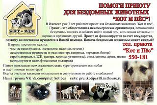 1920 X 1279 756.2 Kb Официальная тема приюта 'Кот и Пёс': наши питомцы ждут любой помощи! и свою семью!
