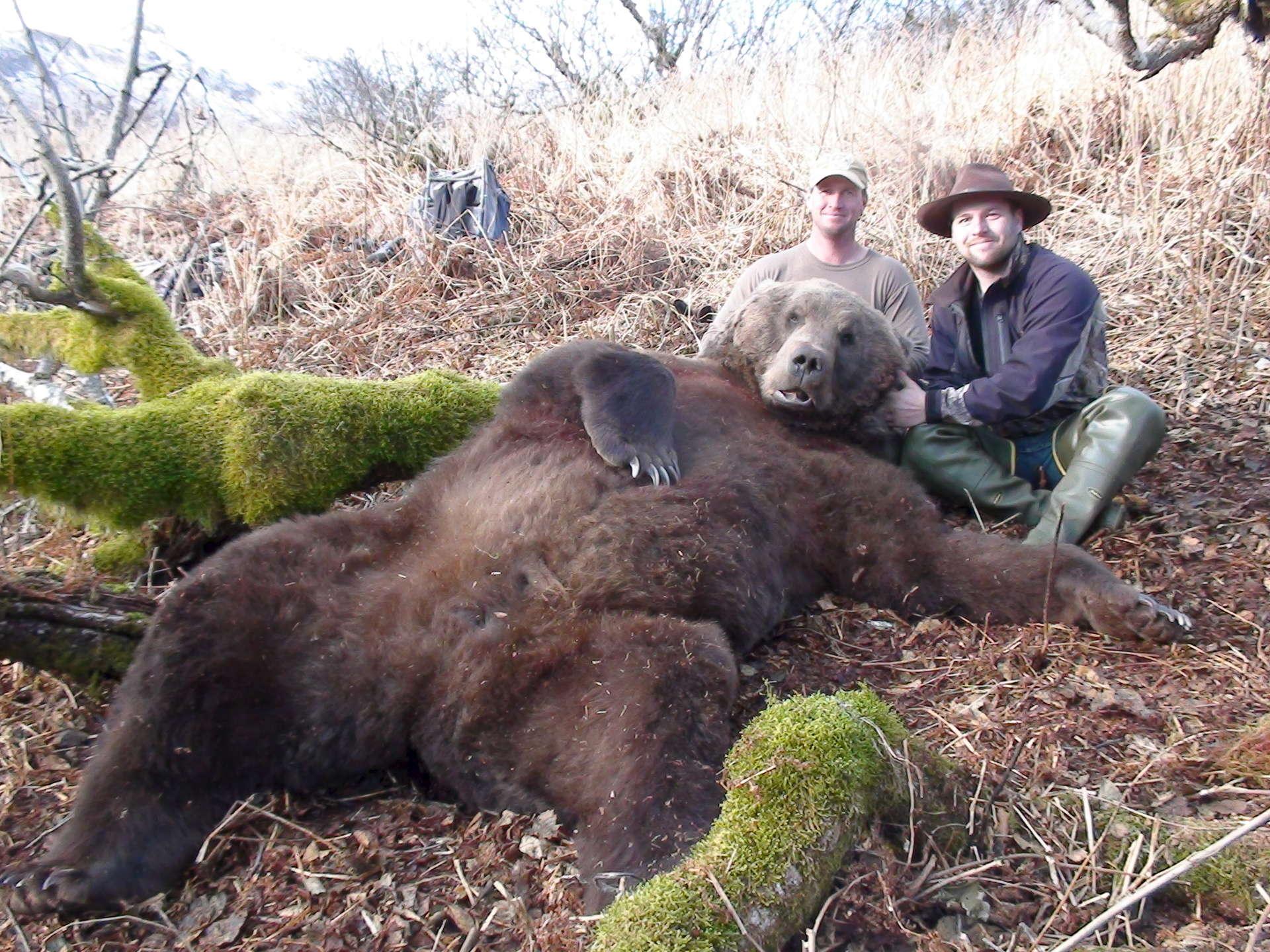 самый огромный медведь в мире фото итоге