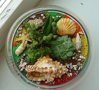 658 X 600 189.4 Kb 452 X 600 113.7 Kb 'Сад в стекле'. Композиции из растений.