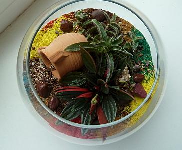 728 X 600 173.5 Kb 'Сад в стекле'. Композиции из растений.
