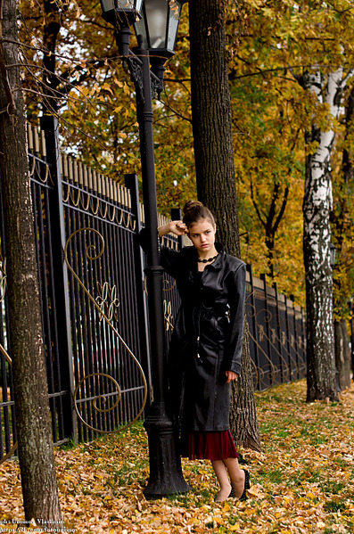 1000 X 1510 365.6 Kb Фотограф Владимир Юминов. / студия /свадьбы / лавстори / уличные/ сертификаты