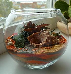 574 X 600 138.3 Kb 'Сад в стекле'. Композиции из растений.