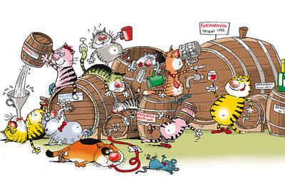 750 X 473 241.4 Kb Питомник британских кошек Cherry Berry's. У нас родились котята!