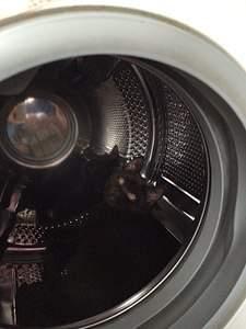 720 X 960 122.9 Kb 720 X 960 125.1 Kb 720 X 960 132.7 Kb Британцы Ричард - Чемпион Мира WCF, Лекси и Бриана. Новые фото 15.01.15г.