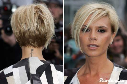 сколько стоят прически в парикмахерской