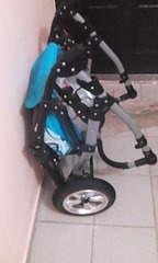 1728 X 2880 387.3 Kb Продажа колясок