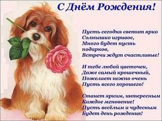1026 X 770 139.2 Kb кинологическая федерация приволжского федерального округа. welcome!