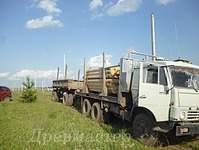 1100 X 825 303.6 Kb Строительство деревянных домов и бань ( фото)