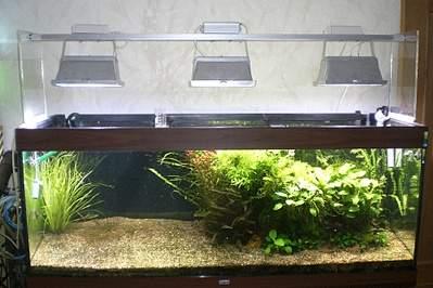 1000 X 666 286.6 Kb 800 X 600 199.9 Kb 600 X 800 167.1 Kb DIY (сделай сам) в аквариуме.